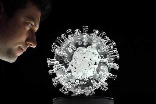 【今日の1枚】ガラスの新型ウイルス、作品で医学界にエール
