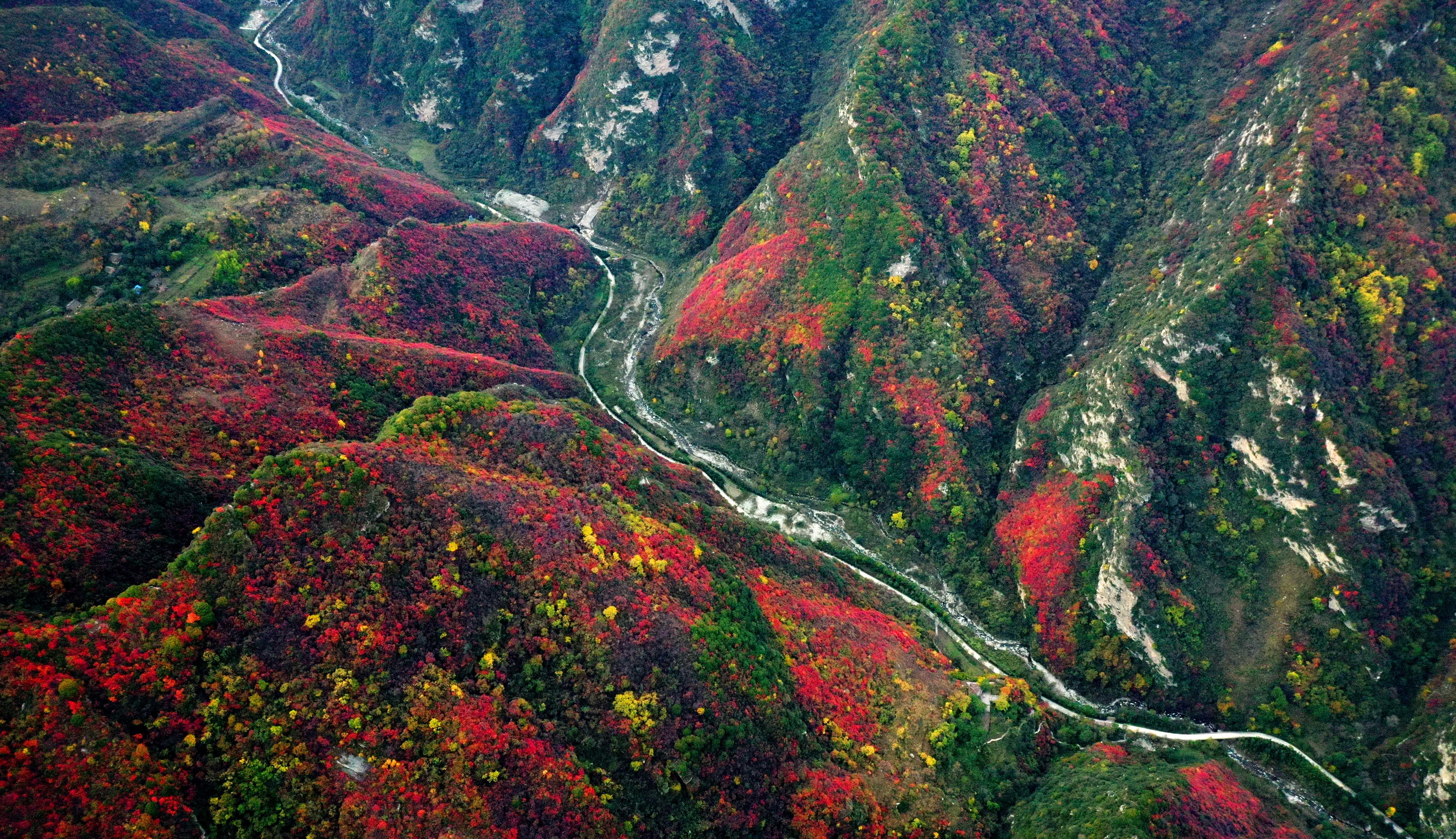 秋が舞い降りた「少華山」、中国・陝西省の名峰