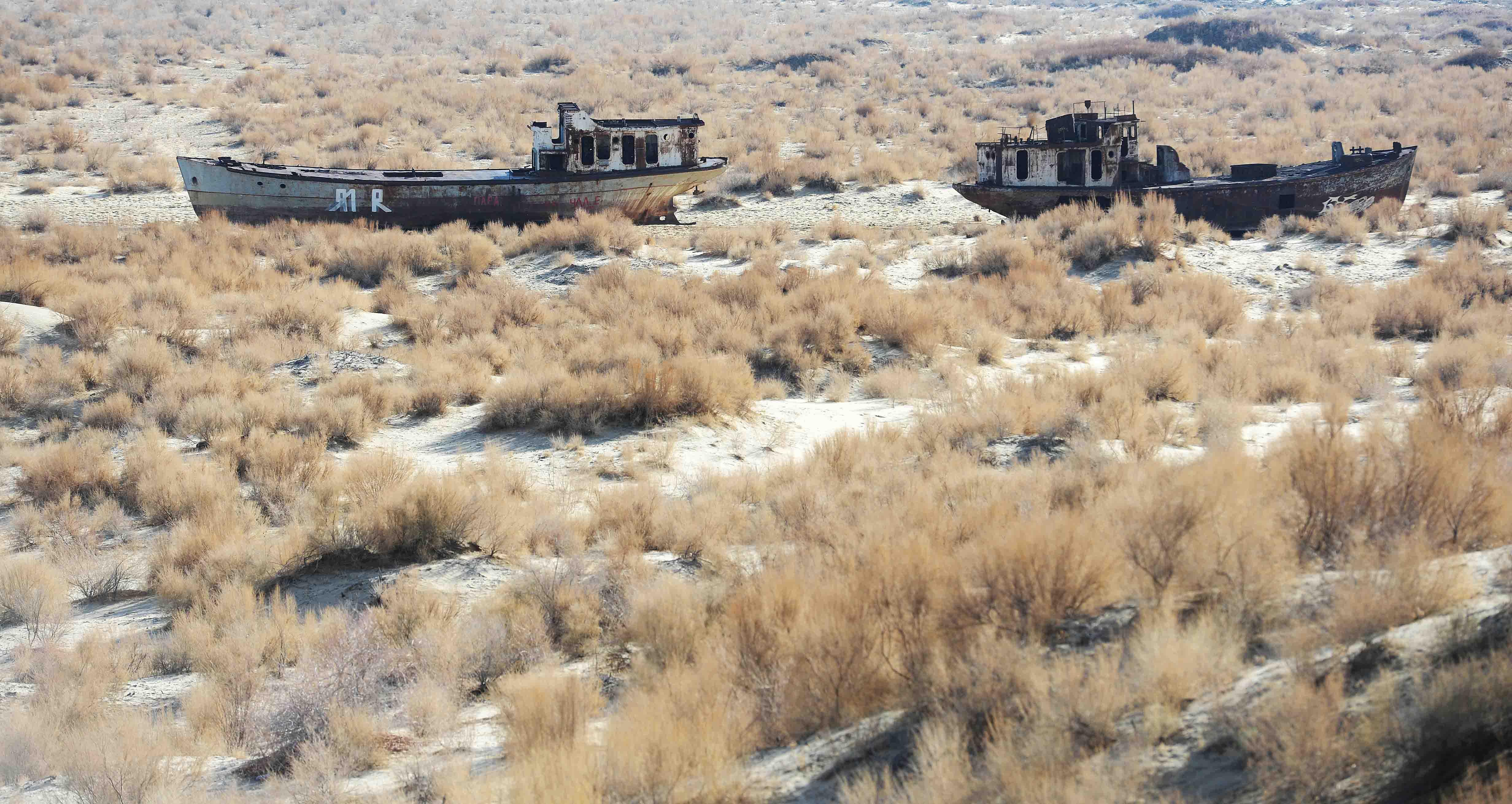 中国の砂漠化防止の経験を「消えゆくアラル海」問題に生かす