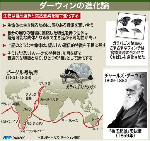 【図解】ダーウィンの進化論