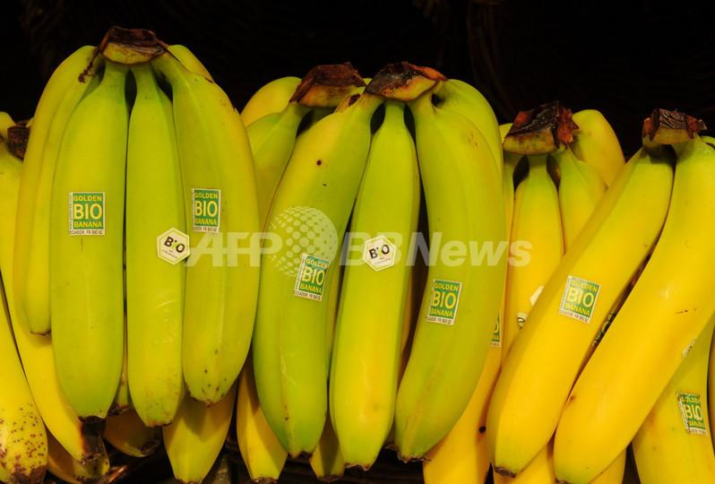 バナナの皮からプラスチック、トルコの女子高生に科学賞