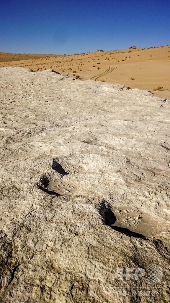 12万年前の人間の足跡発見 サウジの砂漠は緑豊かだった可能性 論文