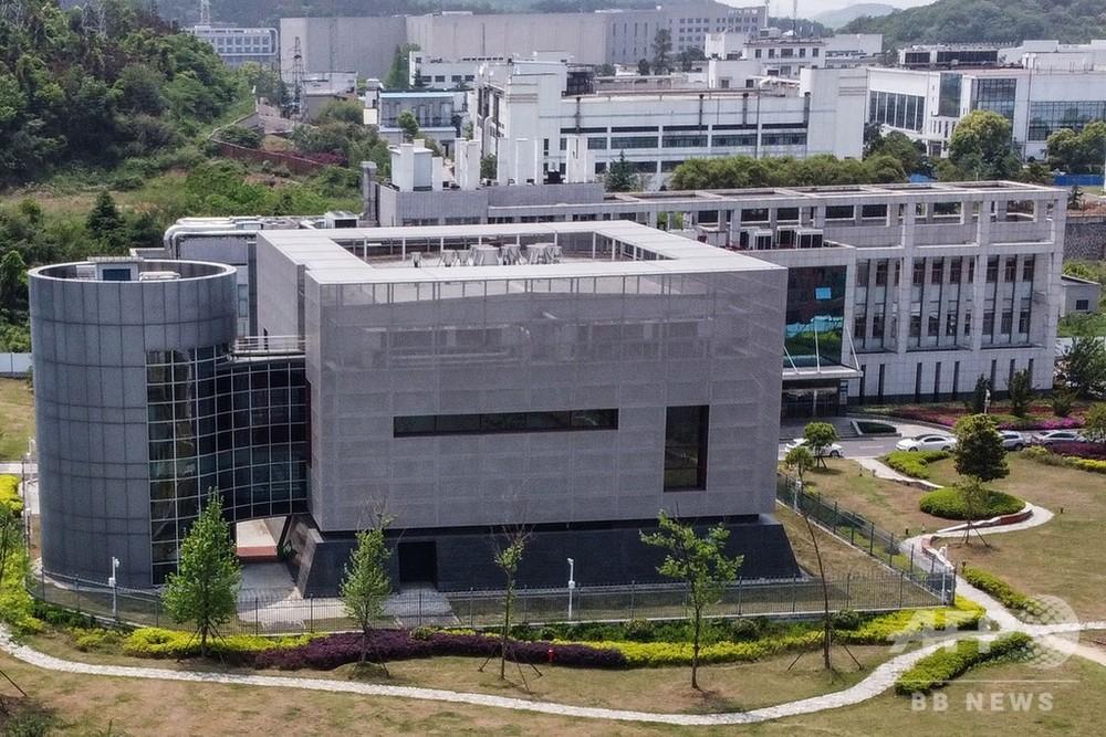 武漢 ウイルス 研究 所 爆発 中国人告発動画「中国武漢P4研究所爆発真実を日本の方に伝えたいです...