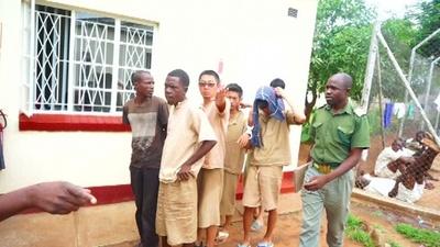 動画:1億円超のサイの角所持容疑で中国人7人逮捕、出廷も裁判は延期 ジンバブエ