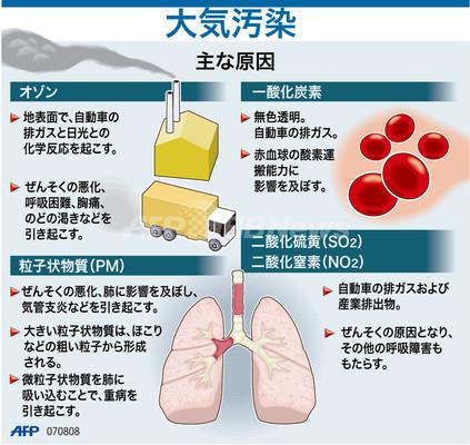 原因 大気 汚染