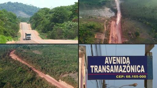 動画:アマゾン熱帯雨林、幹線道路がもたらす開発と破壊 ブラジル