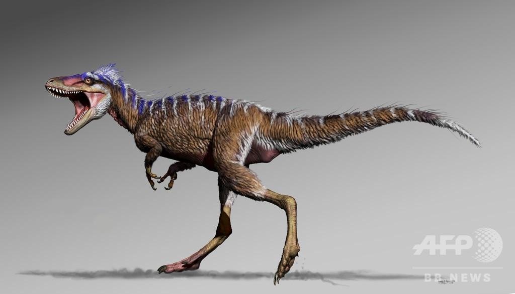 T・レックス、短期間で食物連鎖の頂点に? 新種の小型祖先が謎解くカギ