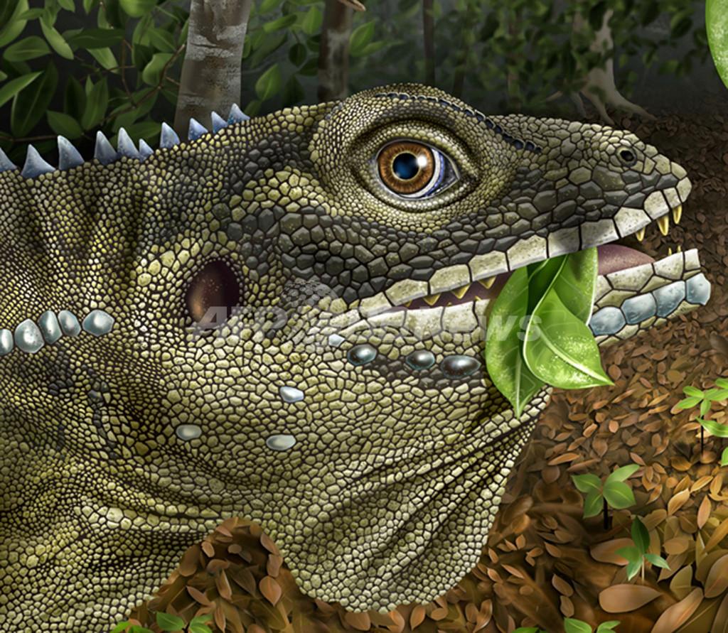 「トカゲの王」J・モリソンさん、太古の巨大爬虫類の名に