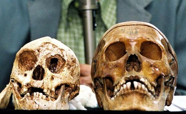インドネシアの「ホビット」、通説よりも早い時期に絶滅か 研究