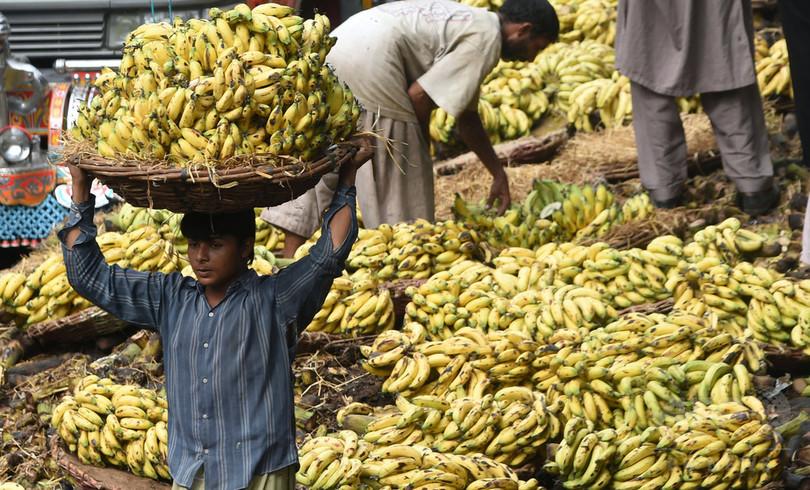 バナナの黒い点、皮膚がん早期発見に一役 研究