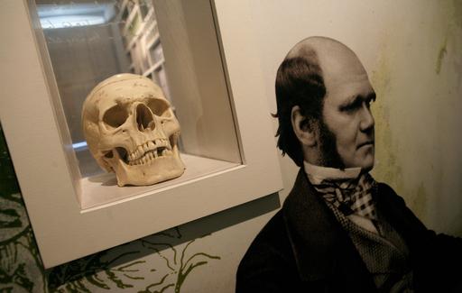 ダーウィンの進化論、米国人で信じているのは40%