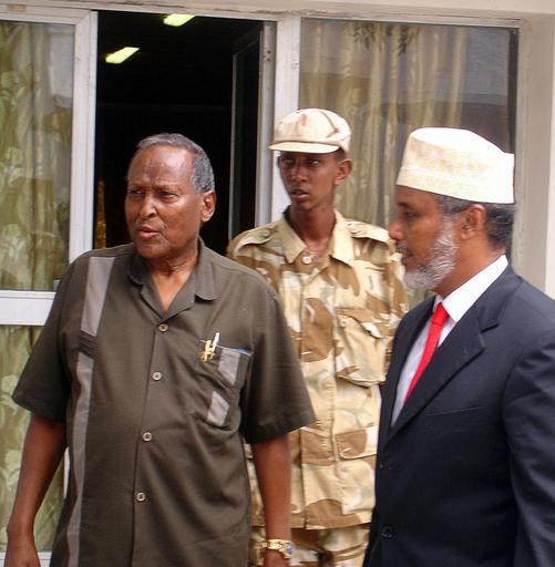 <ソマリア紛争>米軍、南部を再空爆か 暫定政府は情報を否定 - ソマリア