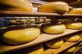 チーズはどこへ消えた?オランダで謎の盗難事件相次ぐ