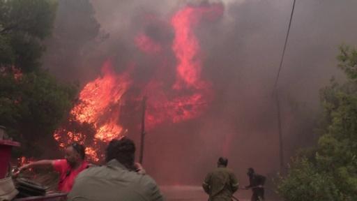 動画:ギリシャ山火事、死者74人に リゾート地の町「もはや存在しない」