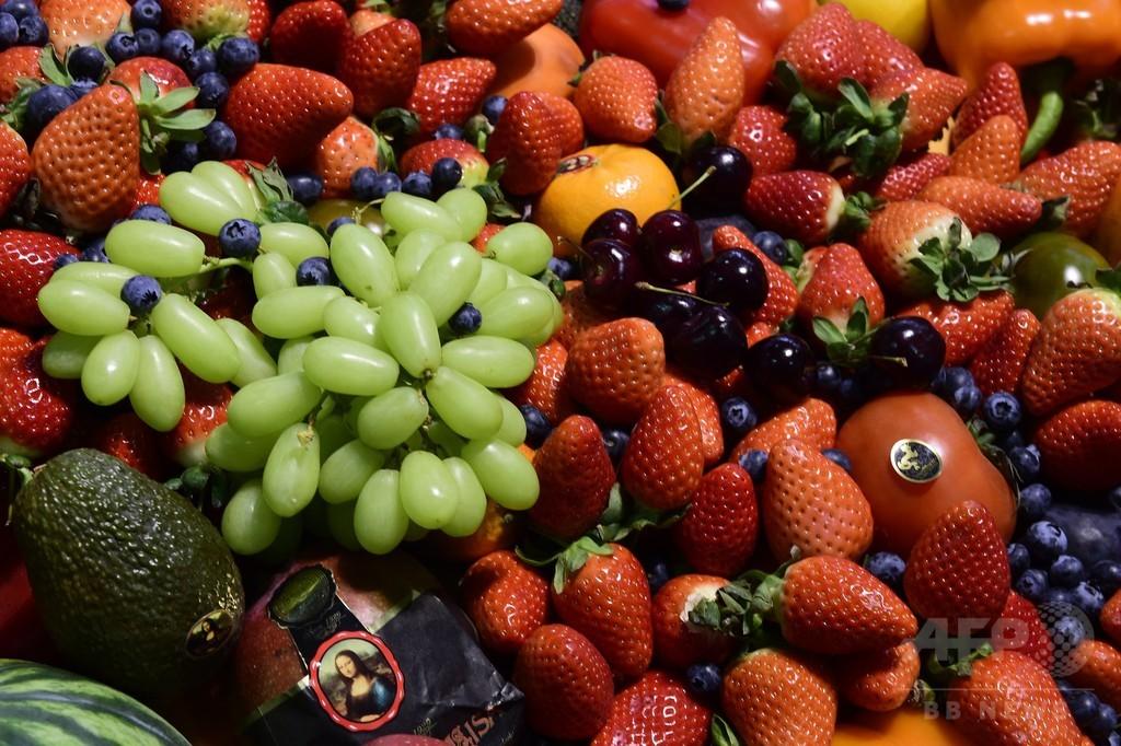 人間の脳の大型化、果物が後押しか 研究