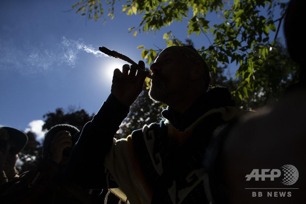 作用が強い大麻と精神疾患発症リスクに強い関連性 研究