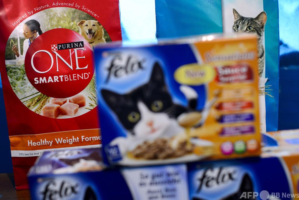 ペットも昆虫食の時代へ…ネスレ「ピュリナ」から新商品発売
