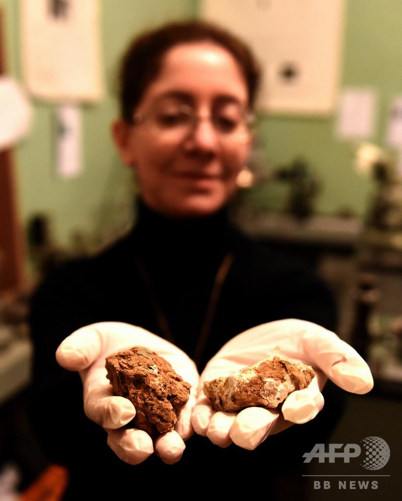 火星でブドウ栽培を、ワイン発祥の地ジョージアの挑戦