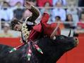 バルセロナで最後の闘牛、来年1月から禁止