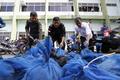 インドネシアのセンザンコウ、違法取引で絶滅危機 監視団体が警鐘