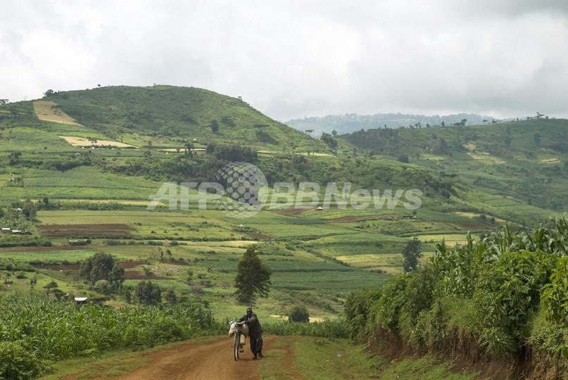 食糧価格高騰が思わぬ恵みに、貧困国ウガンダで活況を呈する農業