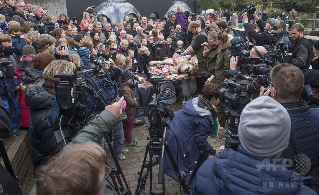 ライオン解剖を子どもに公開、デンマーク動物園に海外から非難