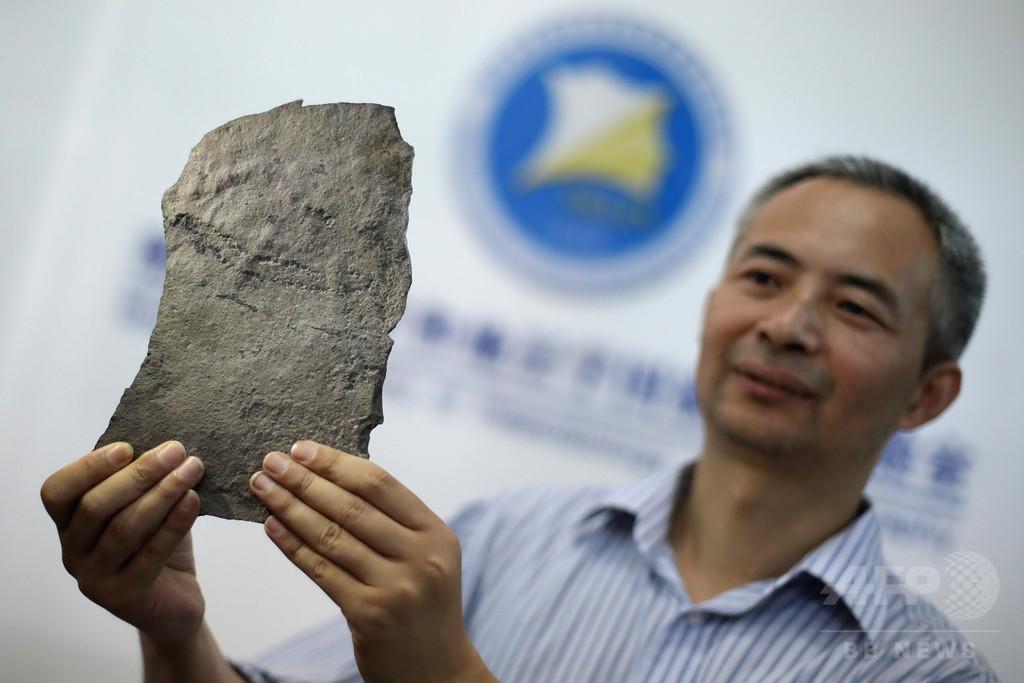 中・米の科学者グループ、最古の動物の足跡を発見