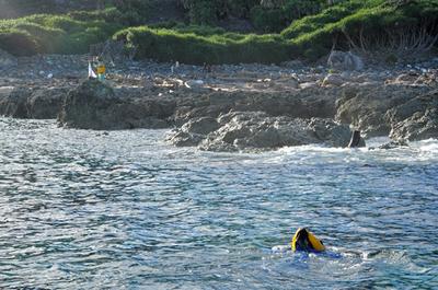 尖閣・魚釣島に日本人10人ほどが上陸