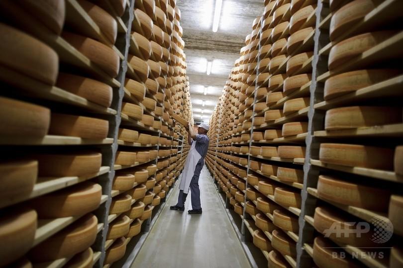 スイスチーズの穴の謎解明、100年ごしの研究