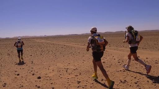 動画:サハラ砂漠で250キロ走破に挑む、世界で最も過酷なレース開幕