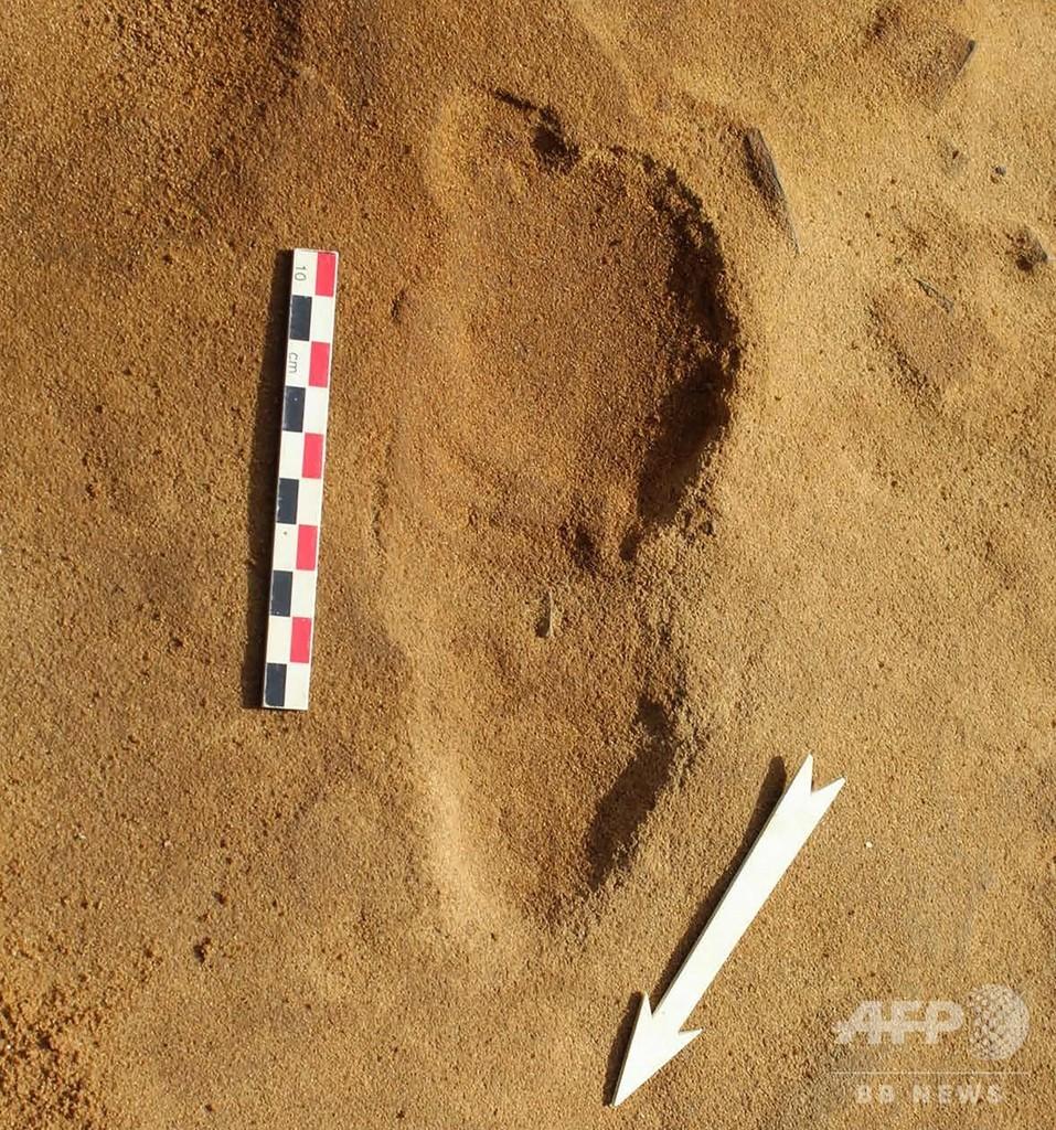 ネアンデルタール人の足跡257個発見、社会構造解明の手掛かりに 仏