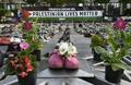 【特集】AFPのベストショット:5月26日~6月1日