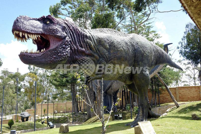 恐竜300種の足跡が約5000個、ボ...