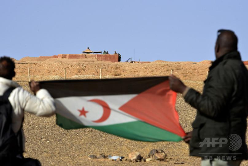 西サハラ和平交渉再開に期待、国連安保理 全会一致で決議採択