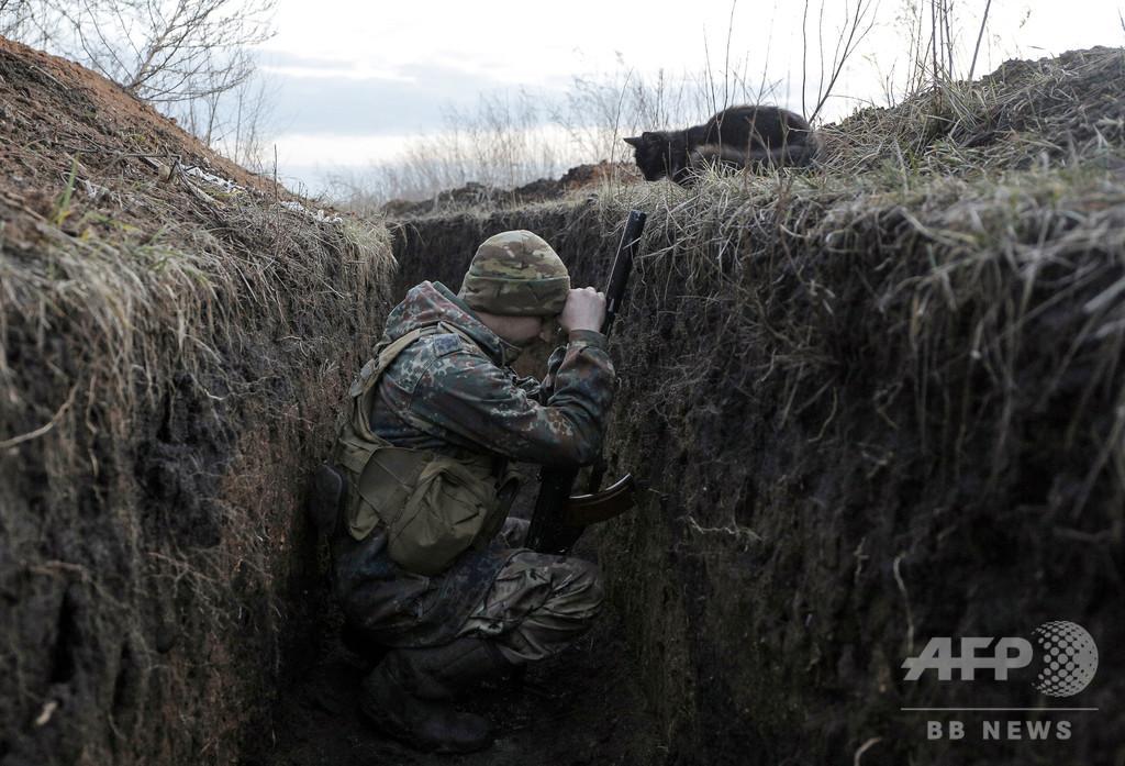 【今日の1枚】戦闘地帯で「まさか」の出会い ウクライナ