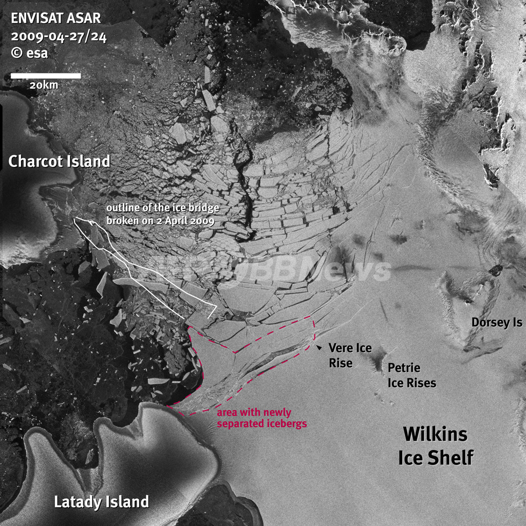 南極のウィルキンス棚氷、氷山への分解が進行 温暖化の影響