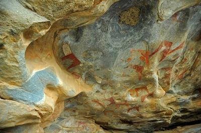 先史時代の希少な洞窟壁画、20年で消失の恐れ ソマリア
