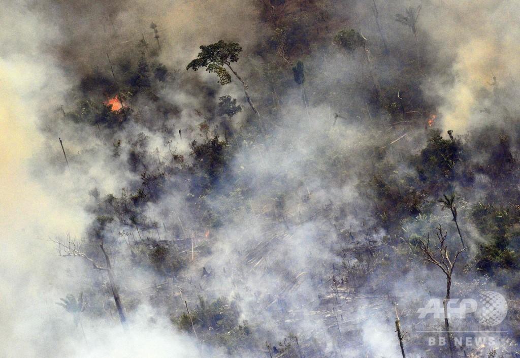 アマゾン森林火災、2日間で新たに1663件 土地の伐開で事態悪化か