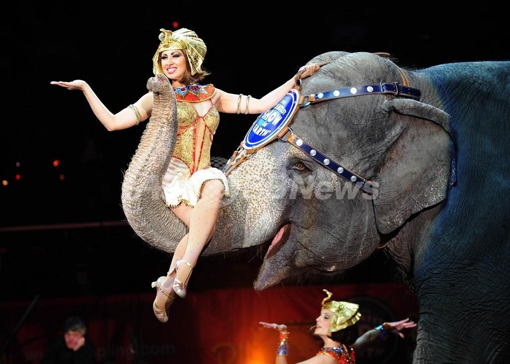 米国でサーカスのゾウ禁止法案、業界団体は反対運動