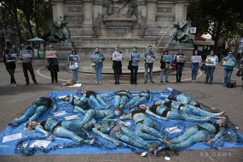 【フランス】仏国民戦線、新党名案は「国民連合」=ル・ペン党首 ->画像>26枚