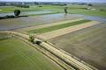 イタリアのコメ輸出が急増、小規模農家が作る高級米が人気