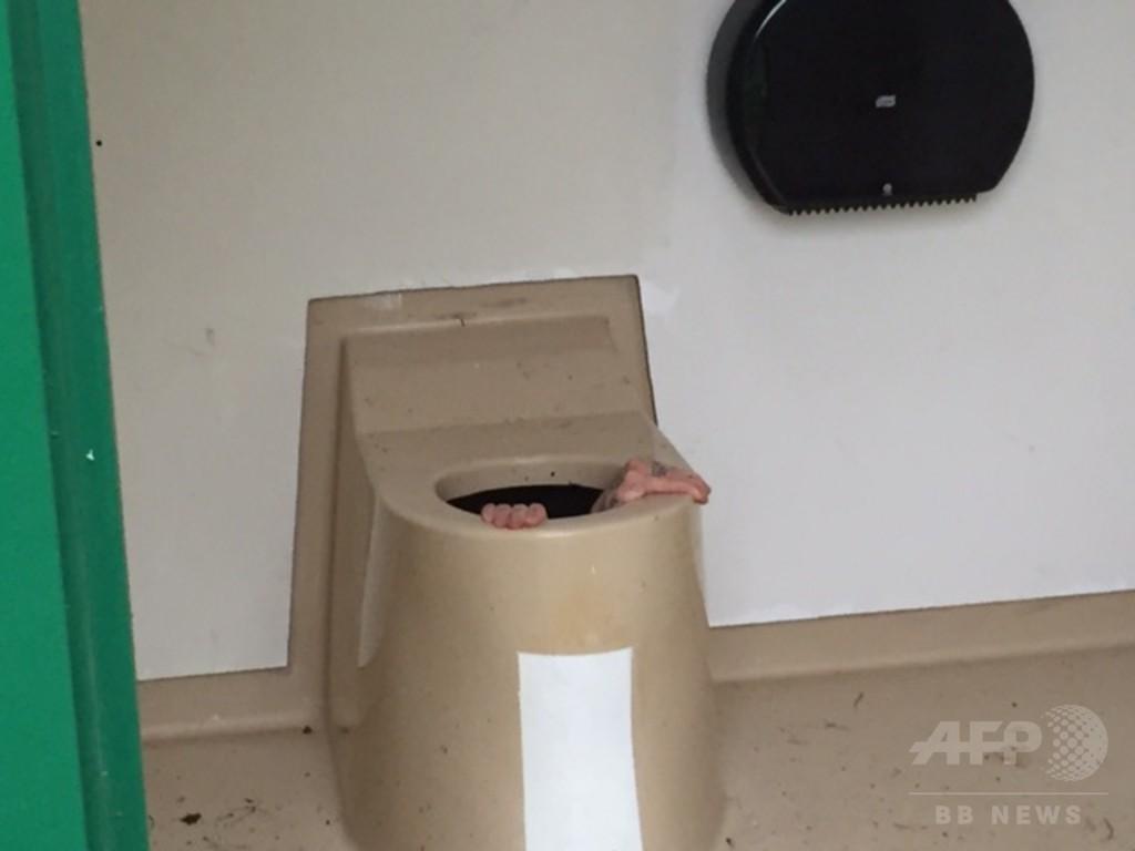 友人の携帯が落ちた! くみ取り式トイレの便槽に突入 ノルウェー