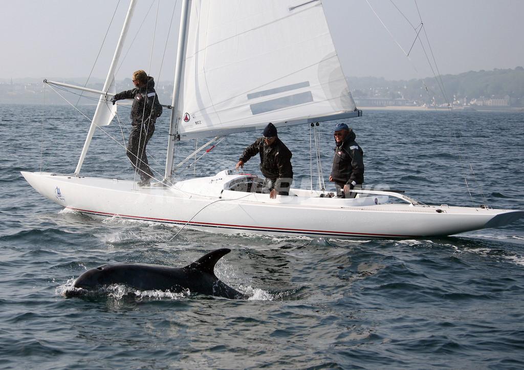 地球上で最も多い種のイルカが生息するビスケー湾で、イルカが激減