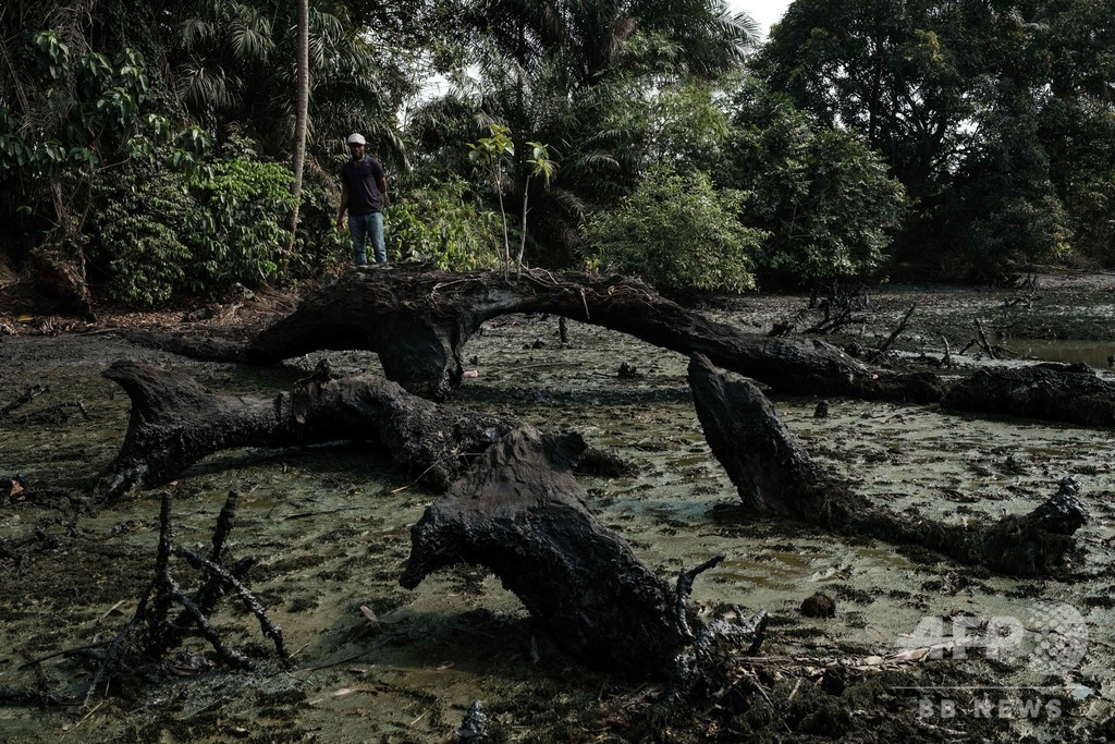 ニジェール・デルタの石油汚染、現在も除去進まず ナイジェリア