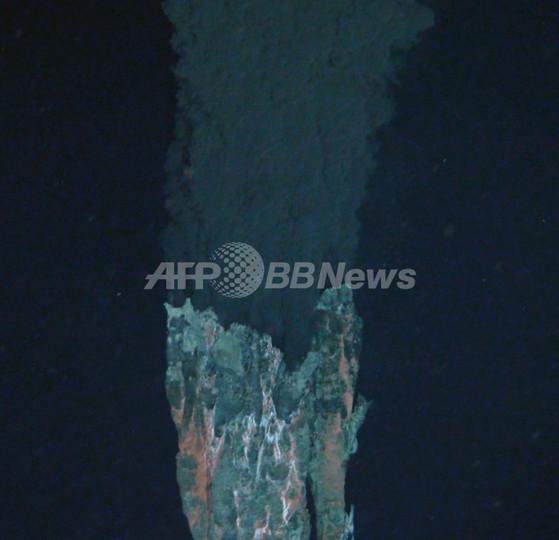 カリブ海の世界最深の噴出孔で新種続々発見、目のないエビなど