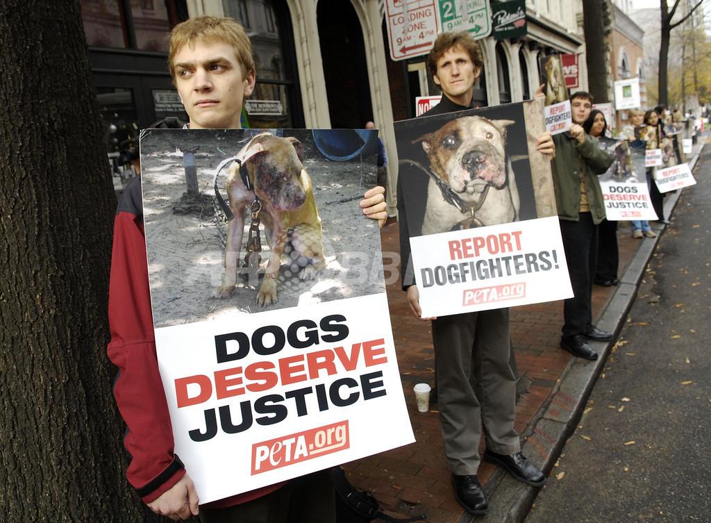 マイケル・ヴィック被告に1年11月の禁固刑、闘犬に関与した罪