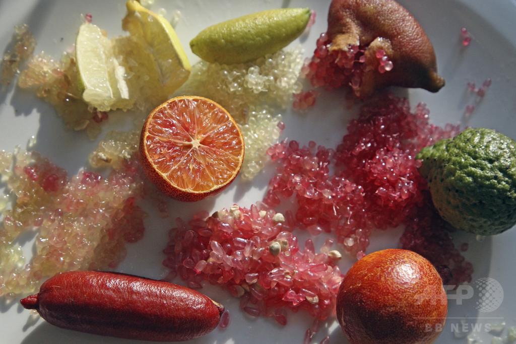 豪原産の「柑橘類のキャビア」、仏料理界から熱視線