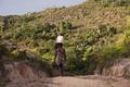 「バニラ景気」に沸くマダガスカルの熱狂と苦悩