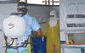 リベリア、エボラ無感染地域が消滅 全土で死者