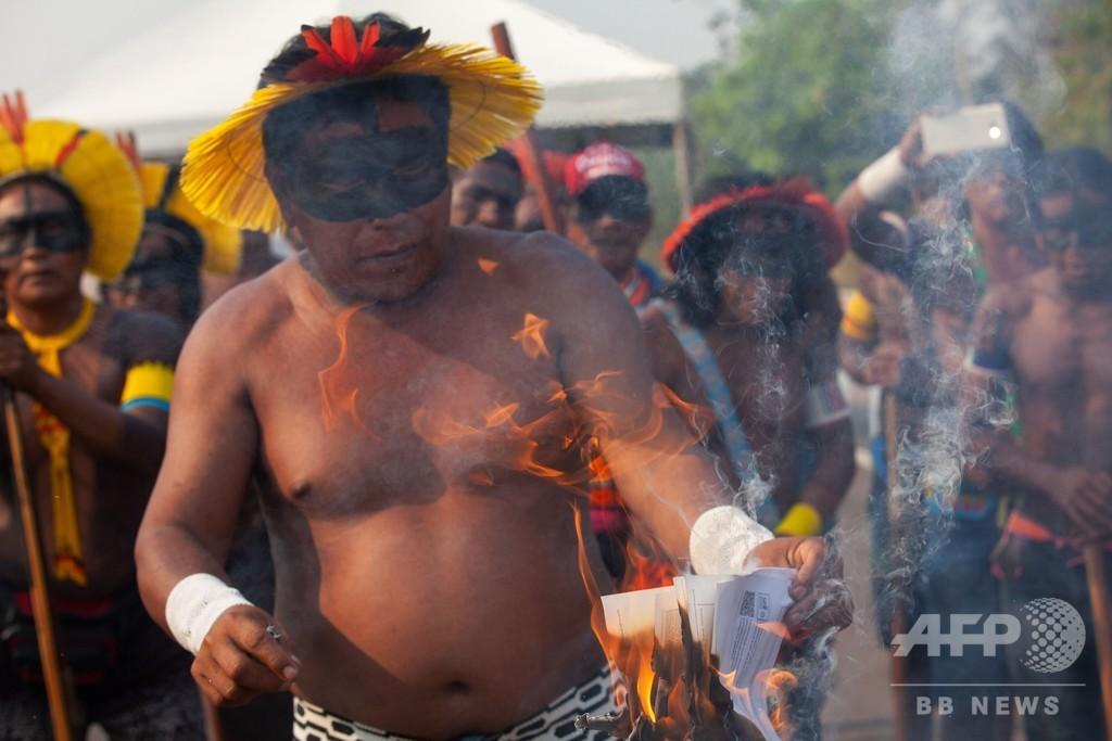 中南米のコロナ死者、25万人超える AFP集計
